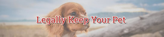 Legally Keep Your Pet