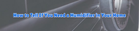 Humidifier in Your Home