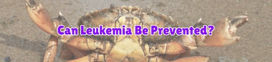 Can Leukemia be Prevented